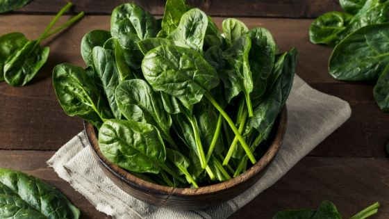 5 Plant foods high in iron