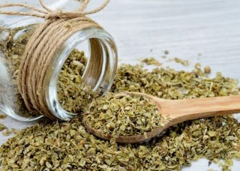 dried oregano on gray wooden table